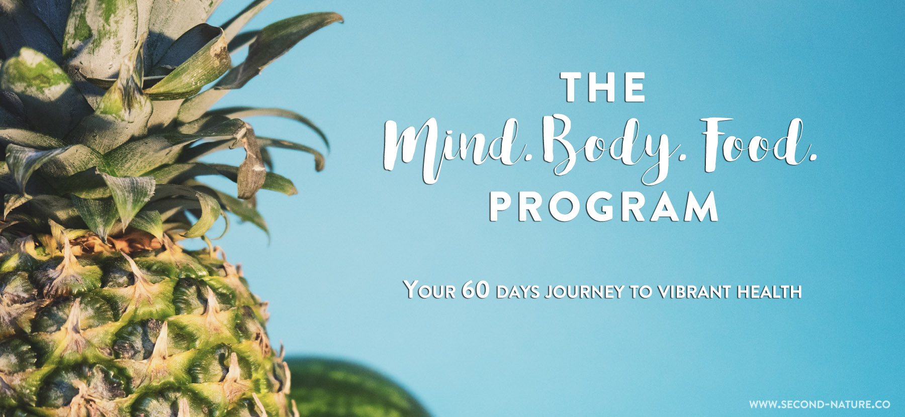 mind-body-food-program-coaching-health